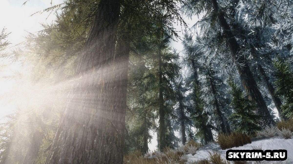 Большие деревья СкайримаМоды Скайрим > Прочее Скайрим