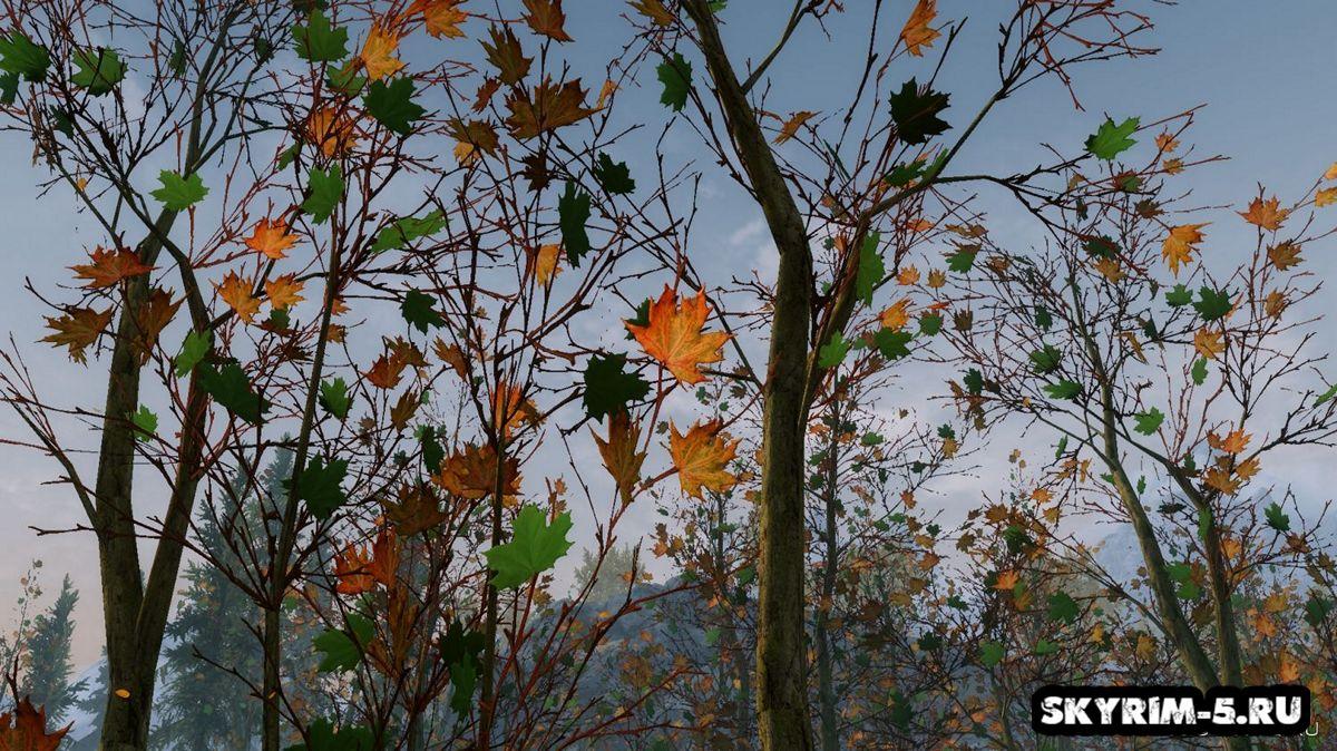 Ретекстур леса -