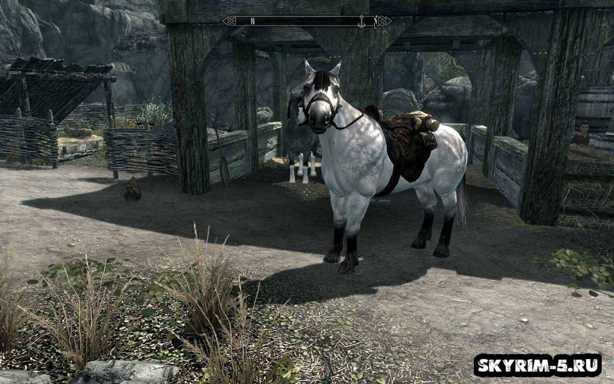 Новая модель и текстуры лошадейМоды Скайрим > Ездовые животные Скайрим