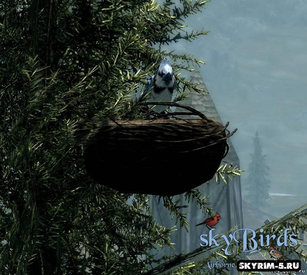 Небесные птицы Скайрима -