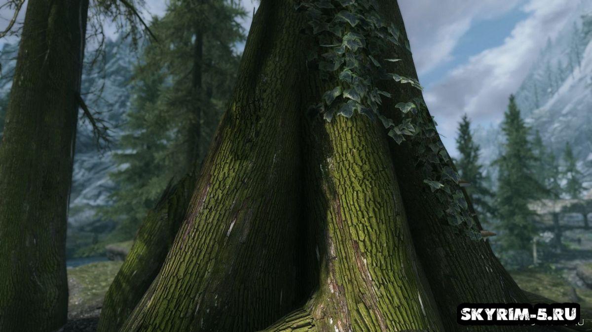 Кора деревьев - альтернативные текстурыМоды Скайрим > Прочее Скайрим