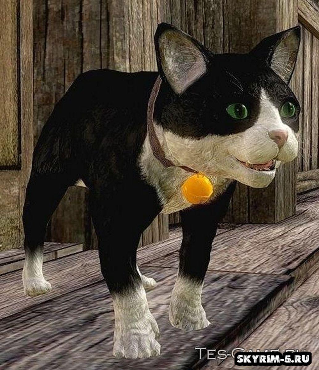 Коты в Скайриме -