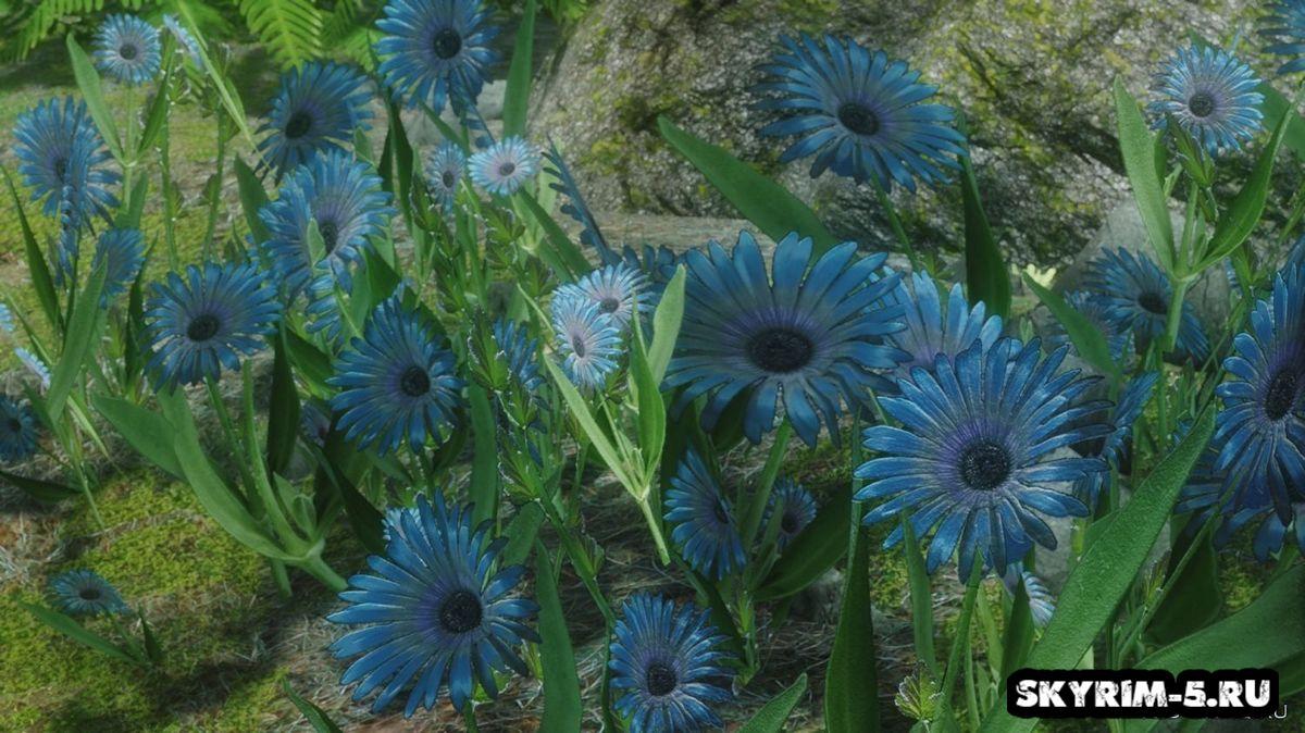 HD Mountain flowers red blue purple -
