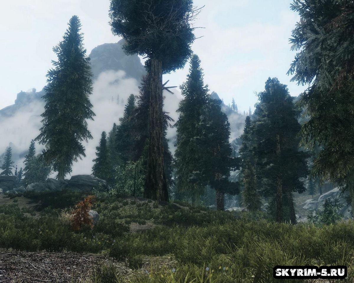 Улучшенные деревьяМоды Скайрим > Прочее Скайрим