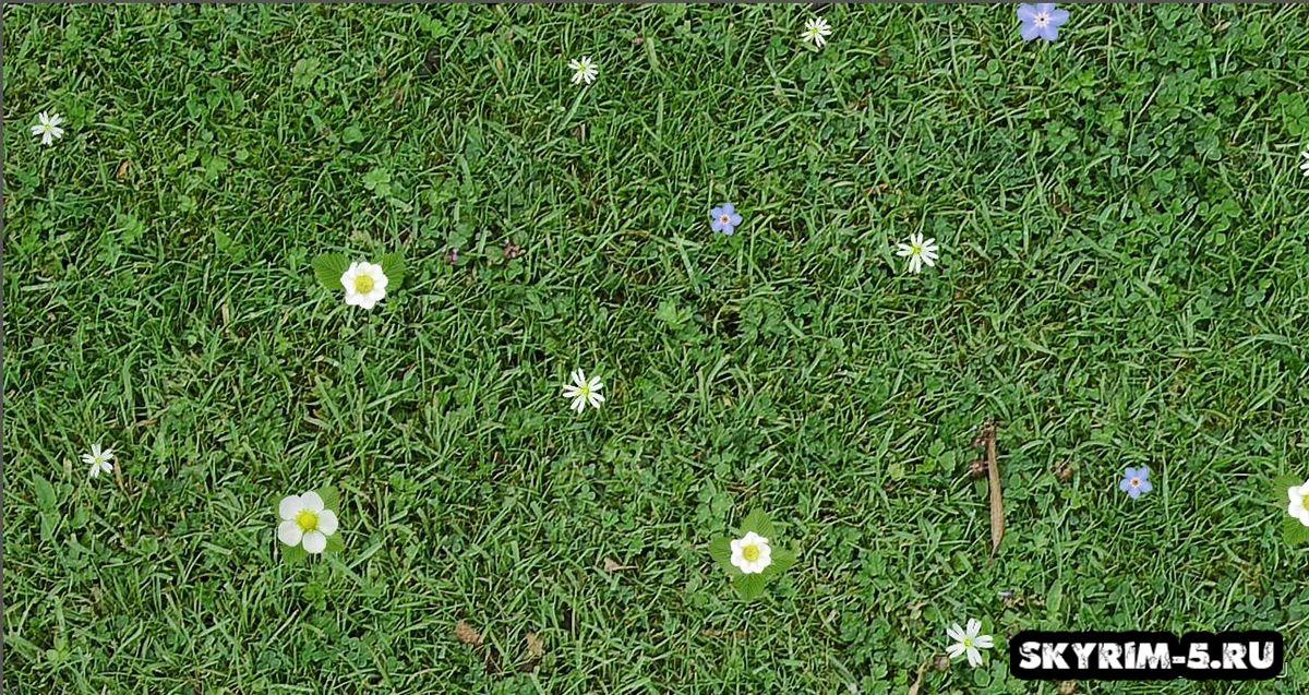 Новый ультра HD ретекстур травы -