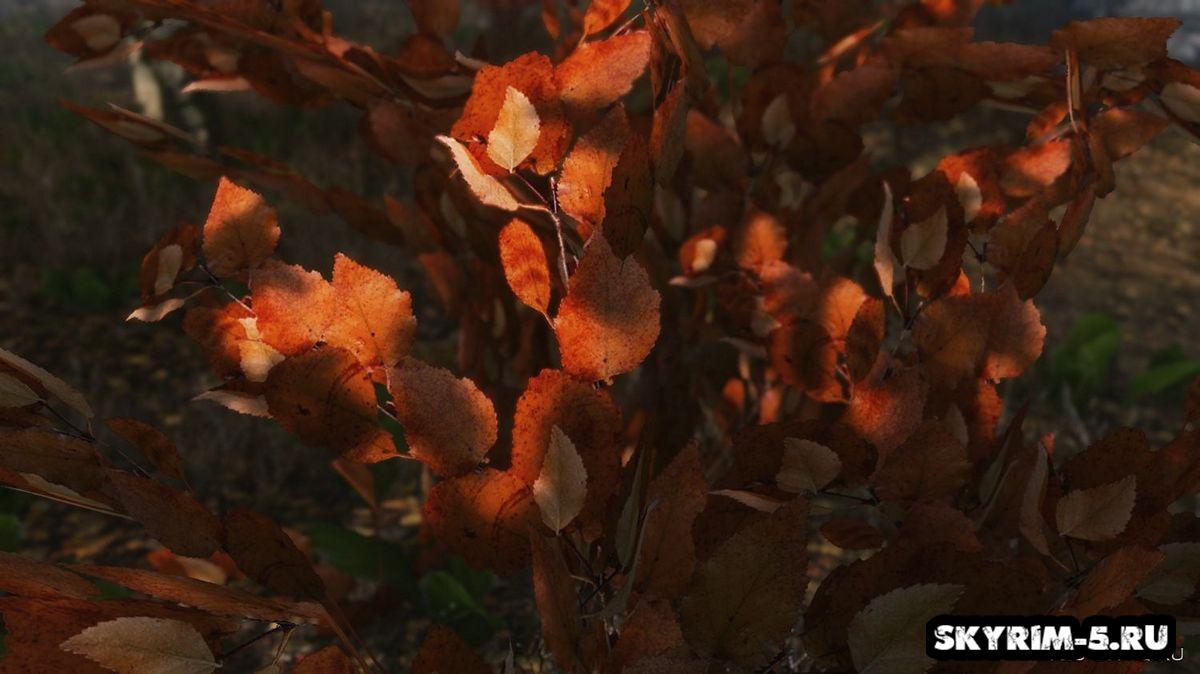 Флора Рифтена HD -