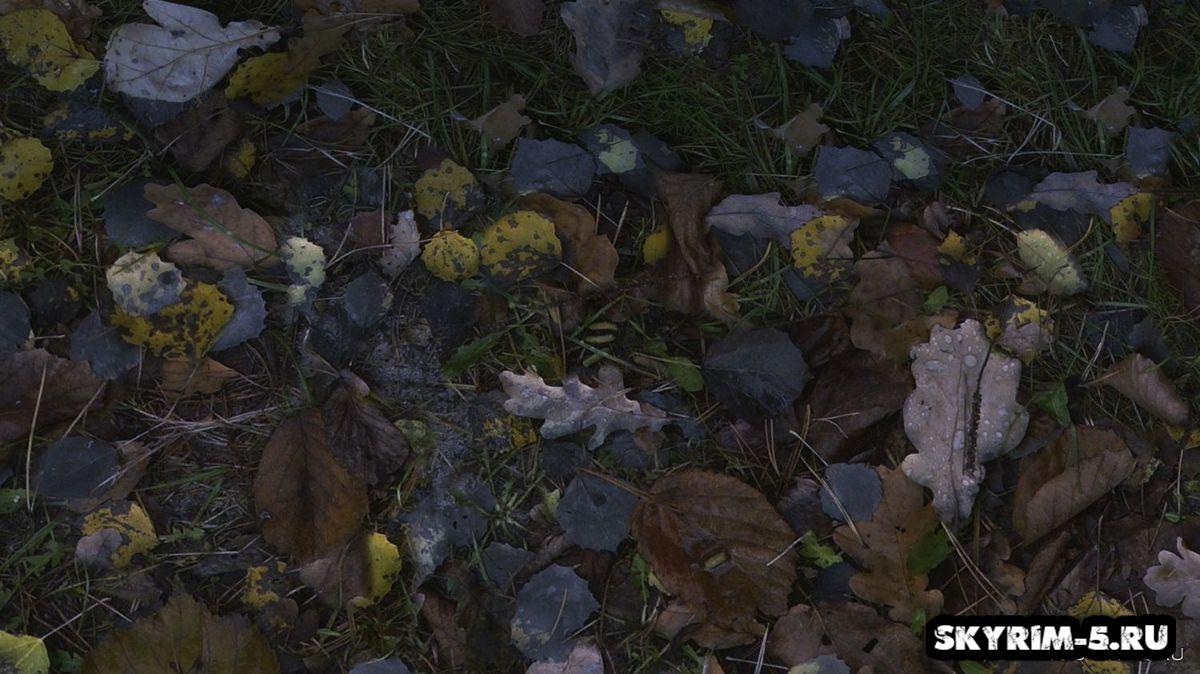 Опавшая листва HD -
