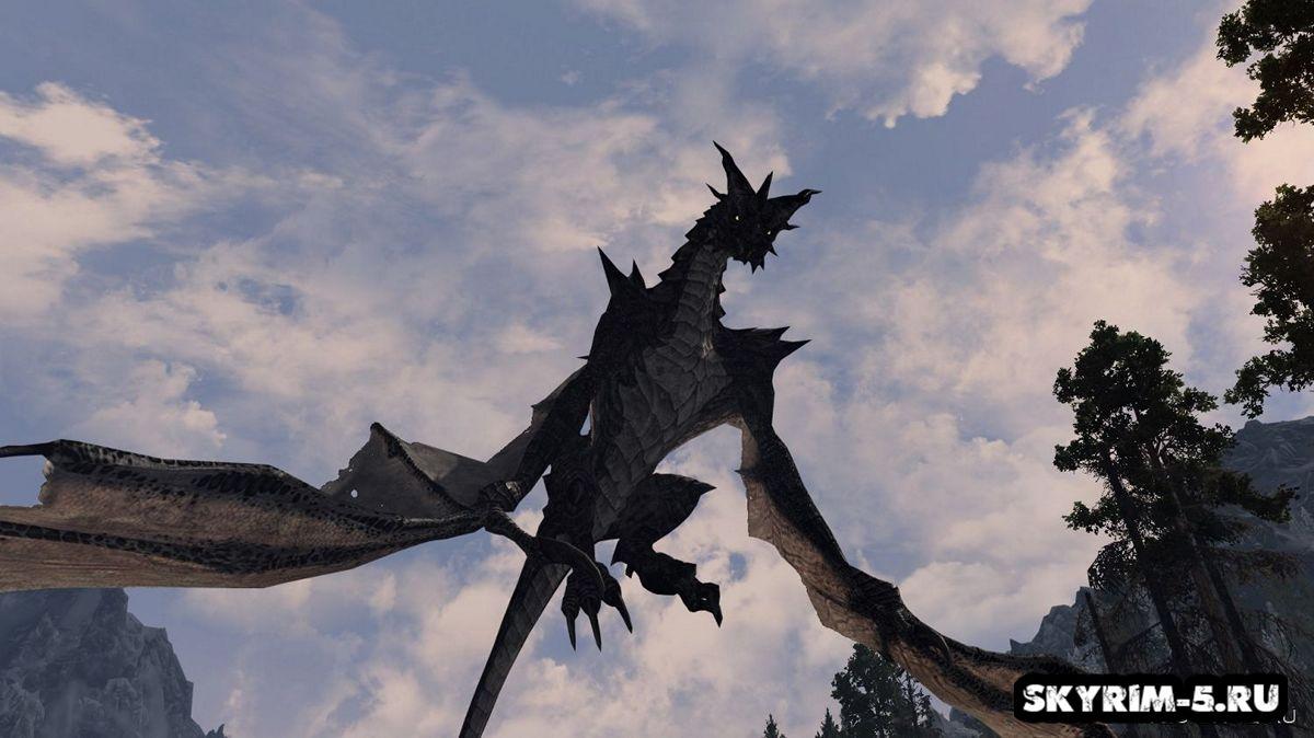 Коллекция разнообразных драконов -