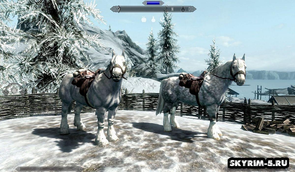 Ретекстур лошадей -