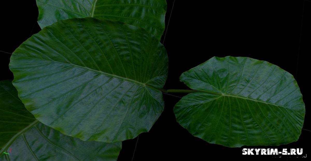 HD зеленая листва -