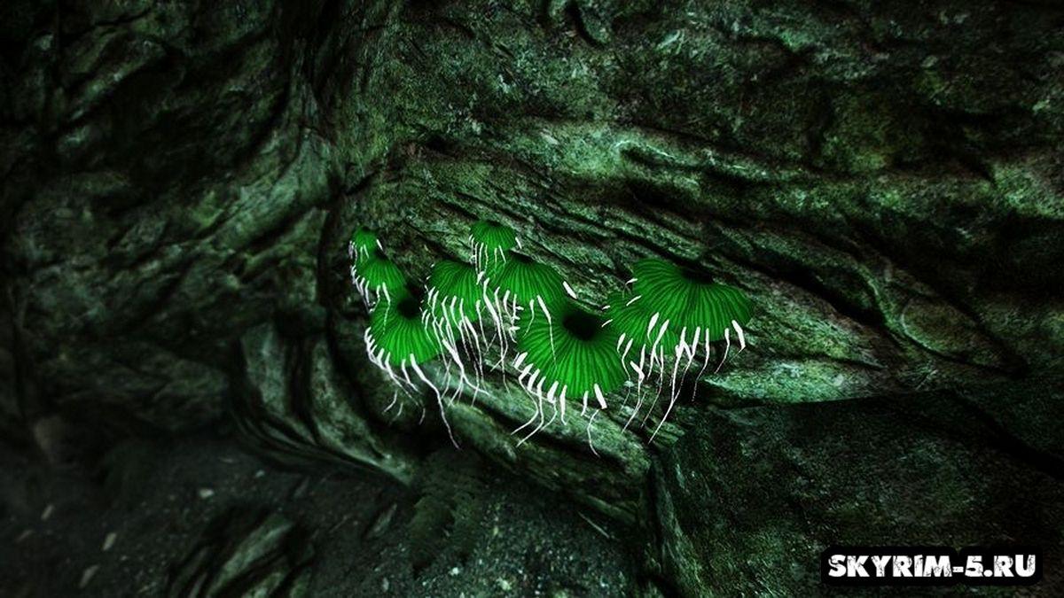 HD glowingmushrooms green -