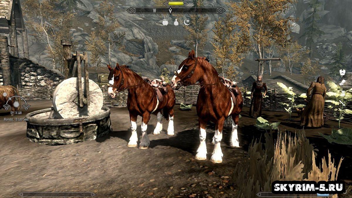 Ретекстур лошадейМоды Скайрим > Ездовые животные Скайрим