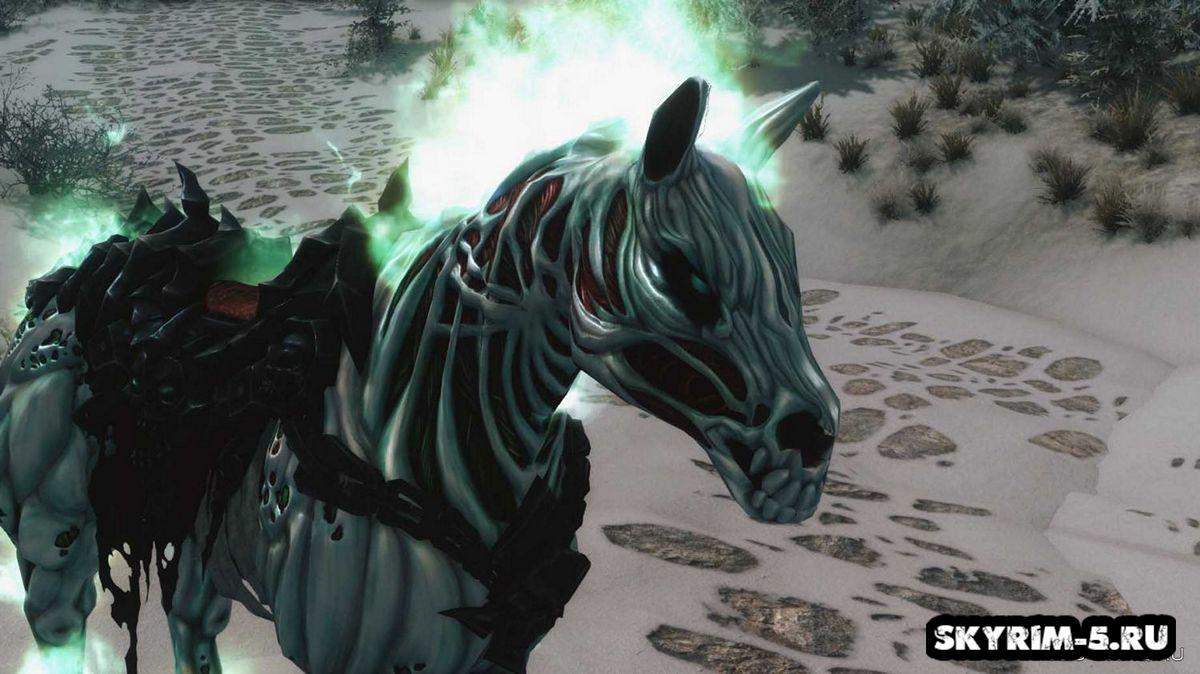 Отчаяние - Ездовая лошадь -