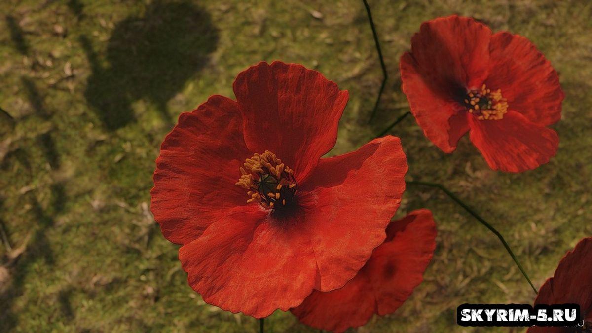 Красный мак от Renthal311 -