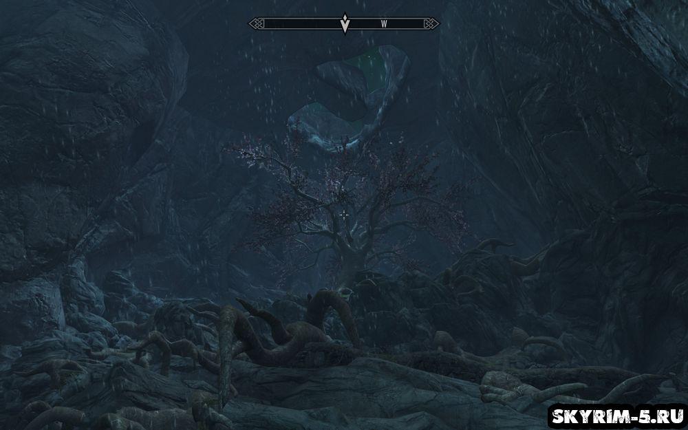 Чудо природы прохождение Скайрим -