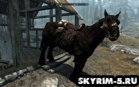 Лошади- Скайрим основы -
